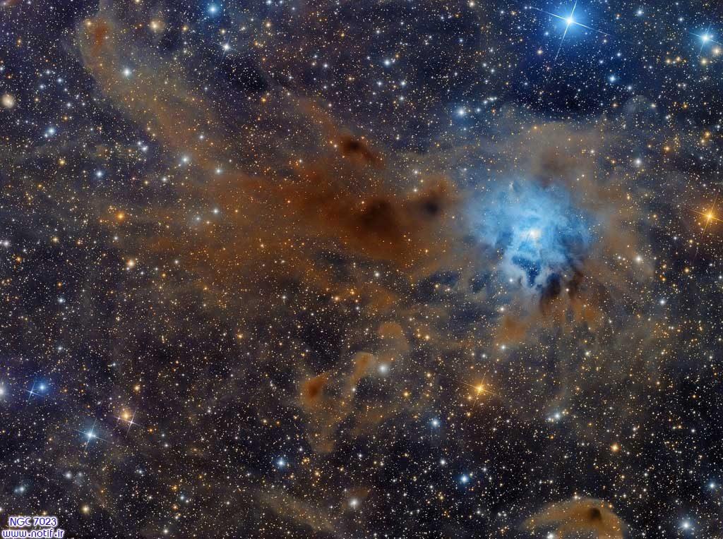 تصویر نجومی: سحابی عنبیه NGC 7023
